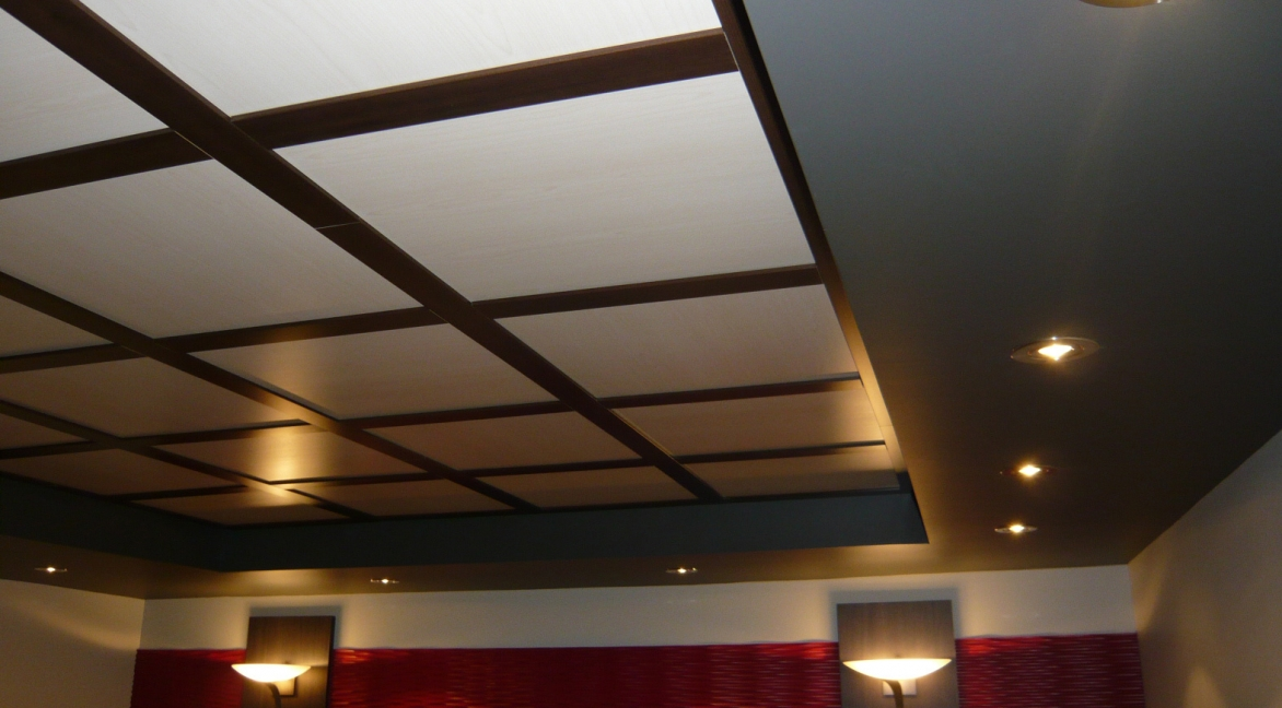 Good next with caisson plafond suspendu for Creer un faux plafond suspendu