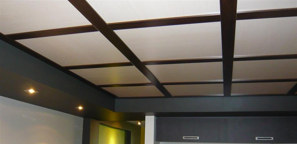 Embassy And Wall Design Ceiling Tiles : Embassy ft elegant ceilings walls